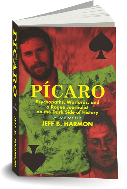 picaro 3d2 About The Author
